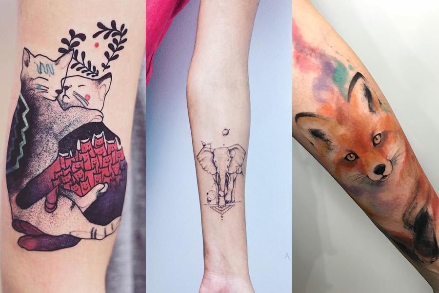 tatuagens no braço de gato, elefante e raposa