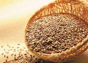 Dieta da linhaça: emagreça e melhore sua saúde!