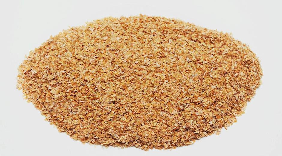 Farelo de trigo: conheça todas as vantagens