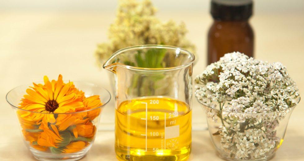 Benefícios do Óleo de Argan: Tudo sobre esse poderoso óleo!