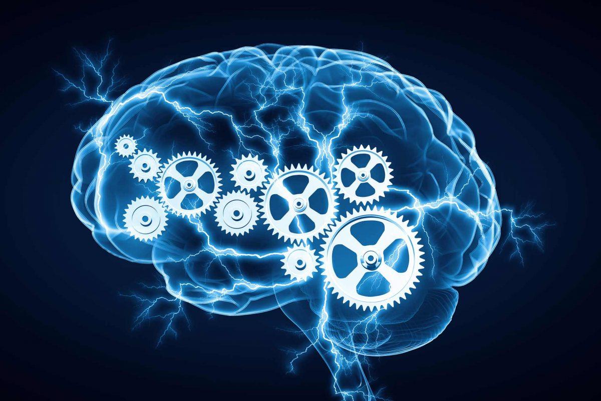 Power Mind X funcionamento do cérebro