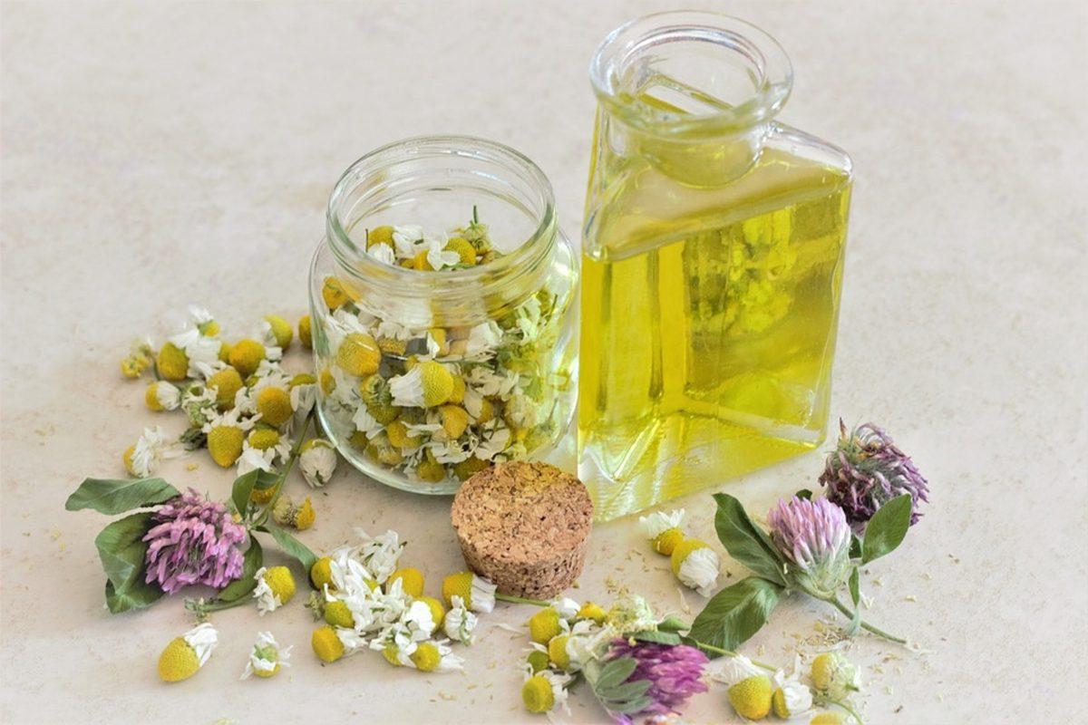 aromaterapia oleo de borragem