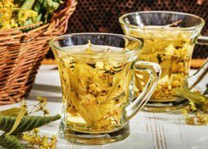 Chá de carqueja: Conheça os incríveis benefícios desse chá e o que ele pode fazer pela sua saúde e beleza!