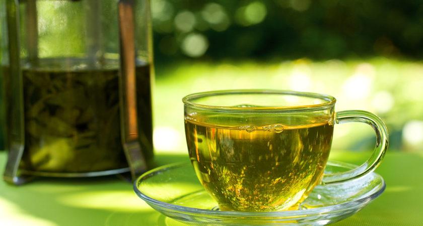 Chá de sene: Para que serve? Quais são seus benefícios? Como tomar?