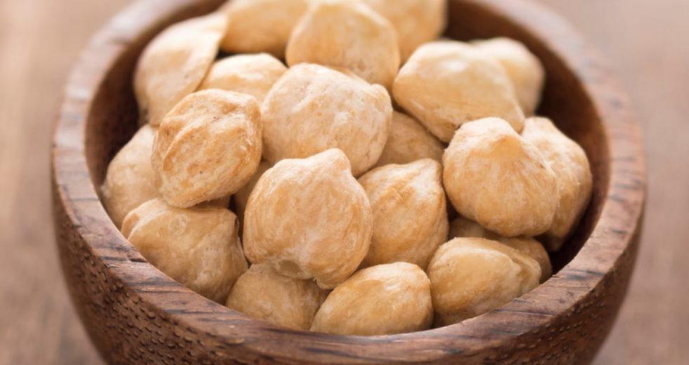Noz da Índia: Conheça todos os segredos dessa semente!
