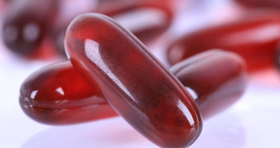Óleo de Krill: Conheça para que serve, seus benefícios e porque consumi-lo!