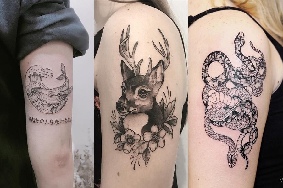 tatuagens femininas de animais no braço