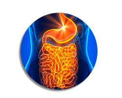 acelera o metabolismo cromofina
