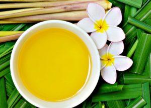 Para que serve o óleo de citronela? Quais são seus benefícios? Confira!