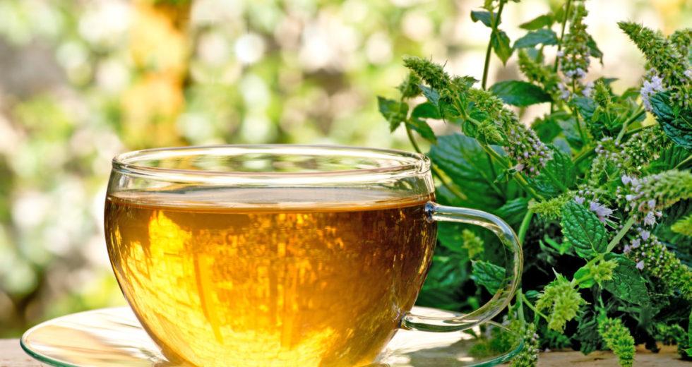 Como preparar o chá de erva doce corretamente? Um bebê pode tomá-lo? Conheça seus benefícios!