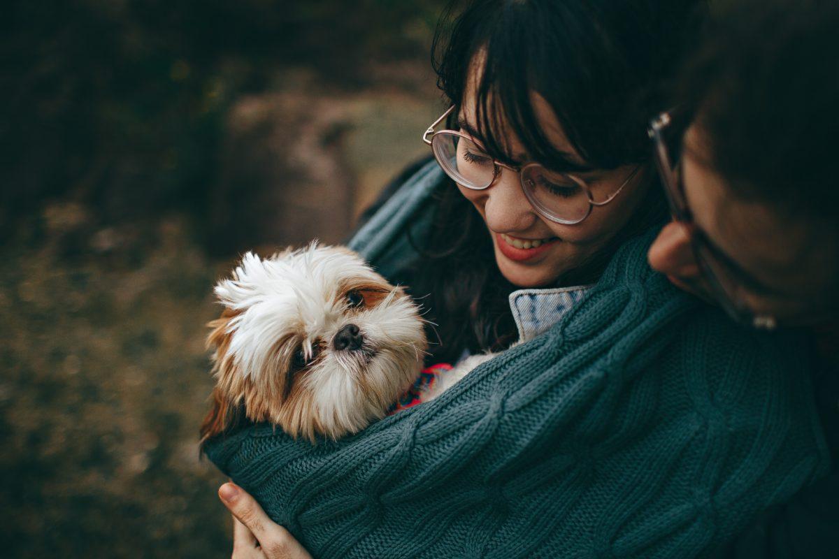 foto de amor com animais