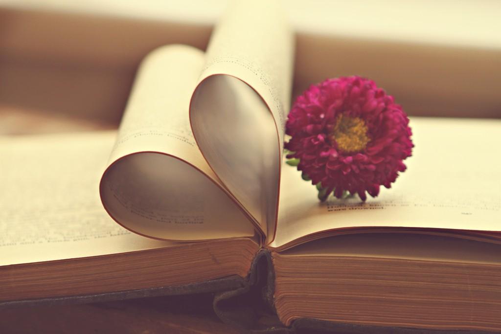 folha em forma de coração e flor